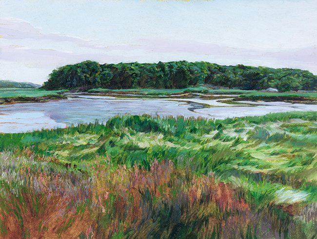 Bailey's Island Marsh